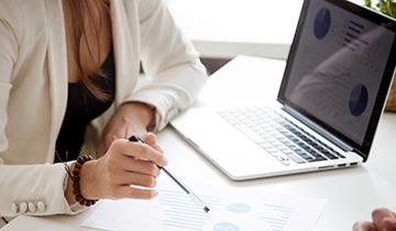 Income Maximisation Strategies - service